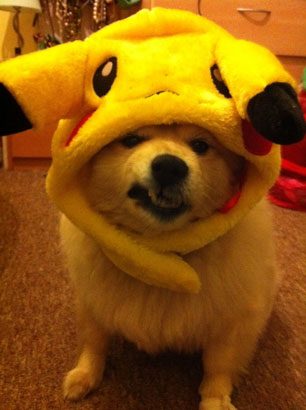 Pika-no-happy